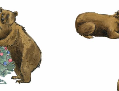 Ein Bär feiert Weihnachten: Bruno Hächler mit Lesungen und Verlosung