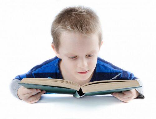 Neue Lieblingsbücher von der Buchhandlung Obergass Bücher